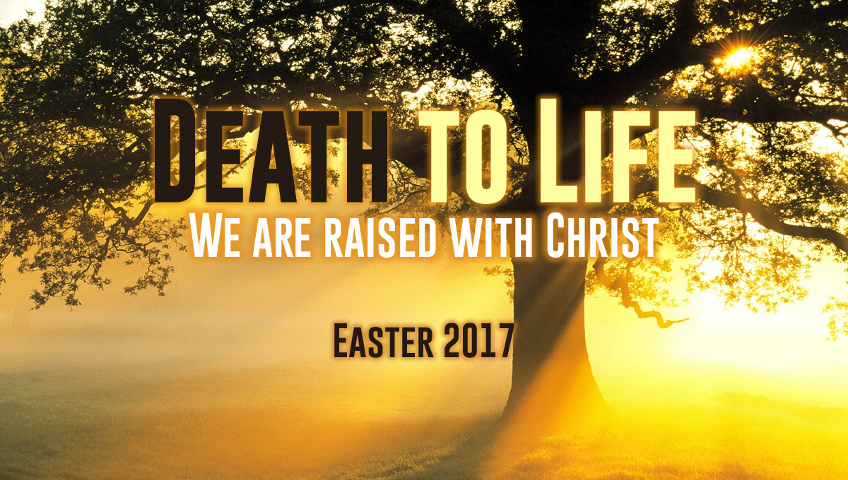 easter 2017 death to life living hope church